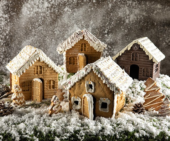 Gingerbreadhouses 21 11 19 grid
